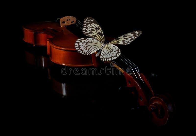 Skrzypce i motyl fotografia stock