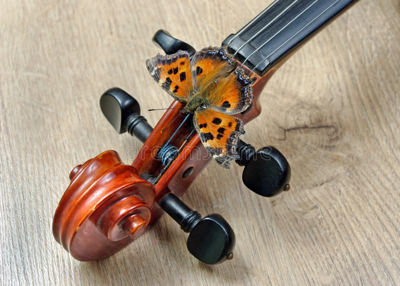 Skrzypce i motyl szyja skrzypce Motyli wielki tortoiseshell obrazy royalty free