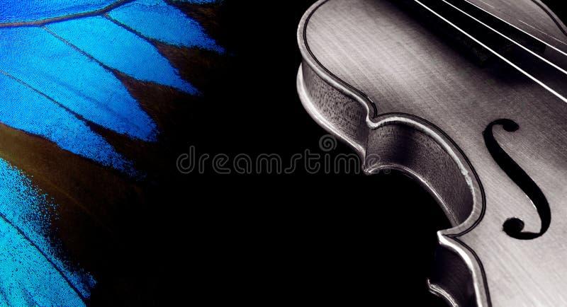 Skrzypce i skrzydła motyl na czerni Kopii przestrzenie zdjęcia stock