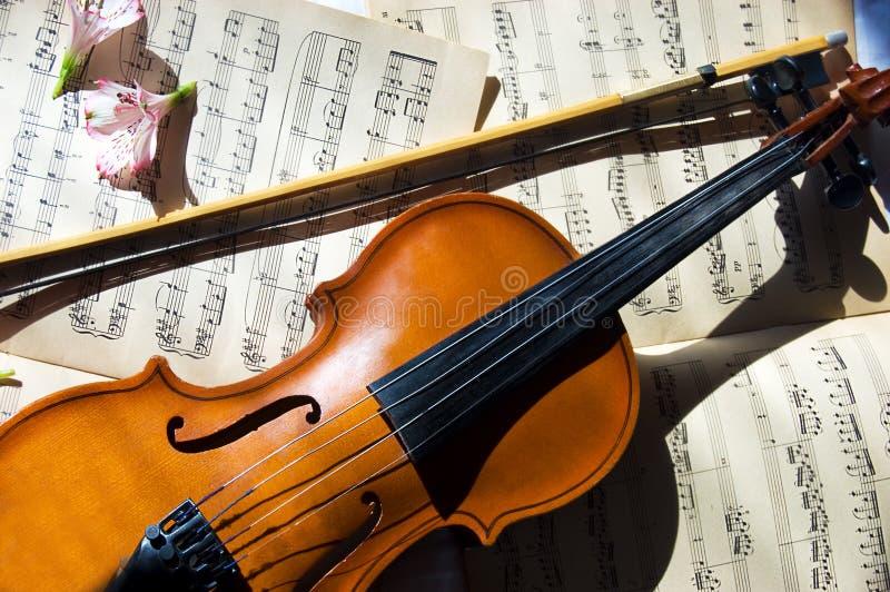 skrzypki muzyczny stary szkotowy kija skrzypce obraz royalty free