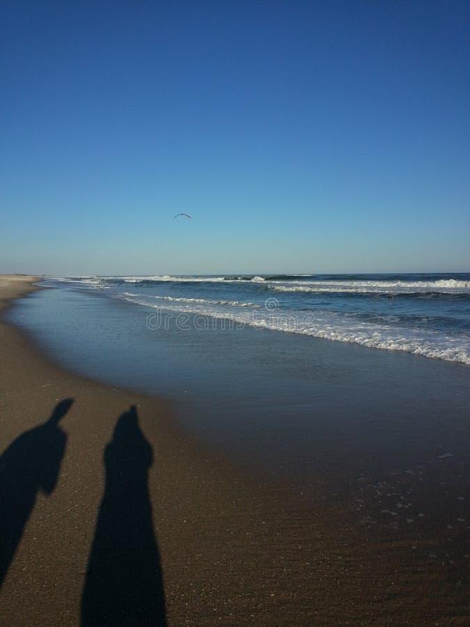 Skugga av par som tar i den blåa sikten av havet och himlen arkivfoto