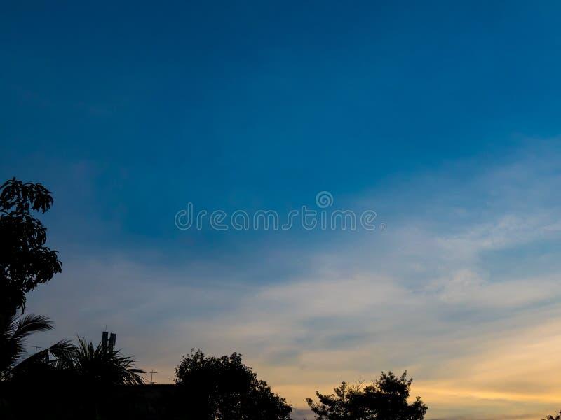 Skugga för droppe för himmelljus till trädet royaltyfri foto