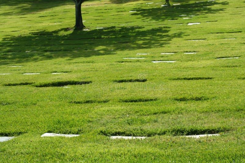 Skugga från tree i kyrkogård