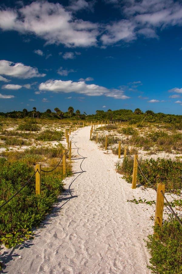 Skugga till stranden i Sanibel, Florida royaltyfri fotografi