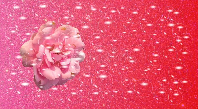 Skuggade violetta blommor för bakgrund med bubblor och violett texturerat vektor illustrationer