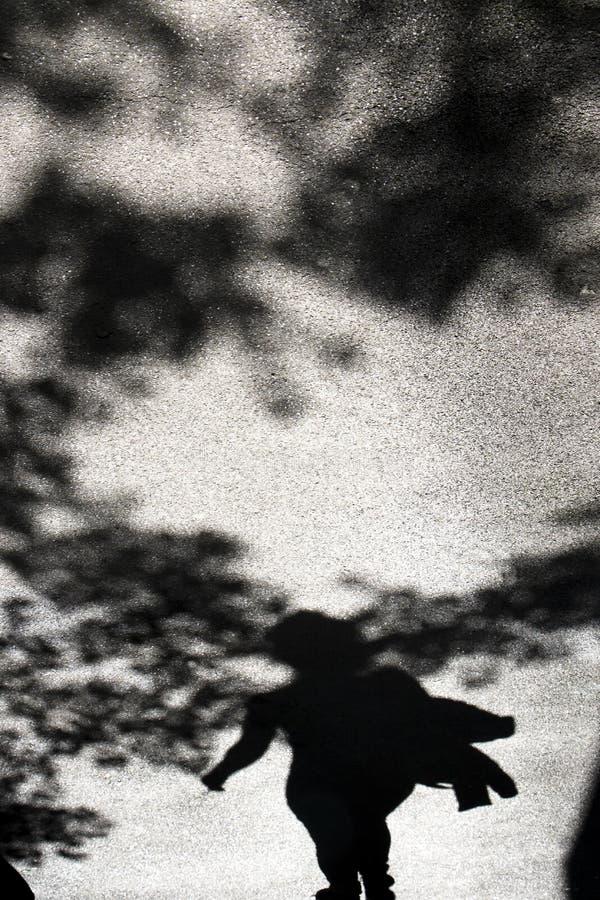 Skuggakontur av en kvinna och treetops royaltyfri bild