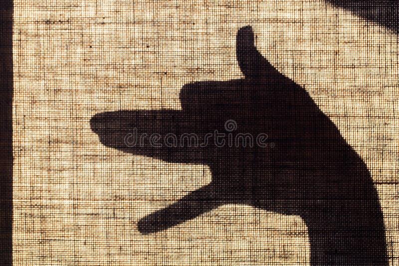 Skuggan av handen och fingrarna i form av en hund formade fläcken på linkanfas arkivbilder