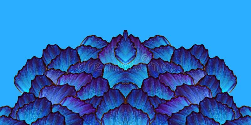 Skuggar av bl?tt Abstrakt symmetrisk modell abstrakt bl? modell vingar av morphofj?rilar vektor illustrationer