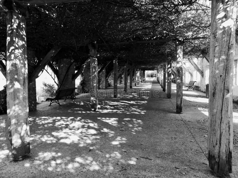Skuggor av en konstruktion i parkerar ensamhet i svartvitt fotografering för bildbyråer