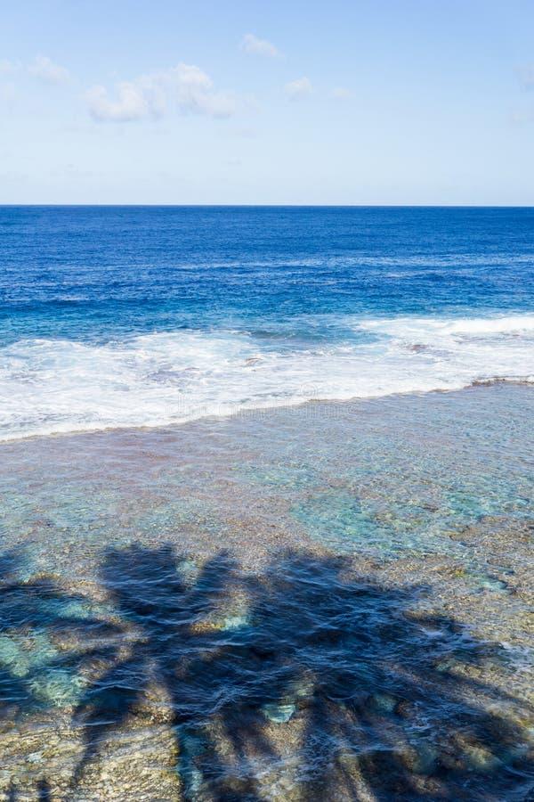 Skuggor av palmträd på vatten under på den Tamakautoga korallstranden arkivfoton