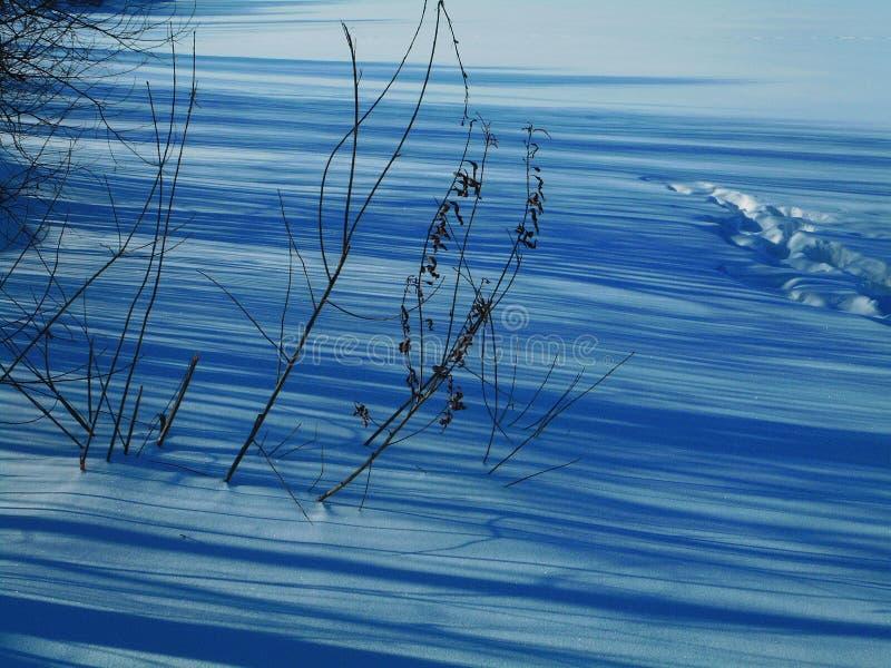 Skuggor i snön på en vinterafton arkivfoto