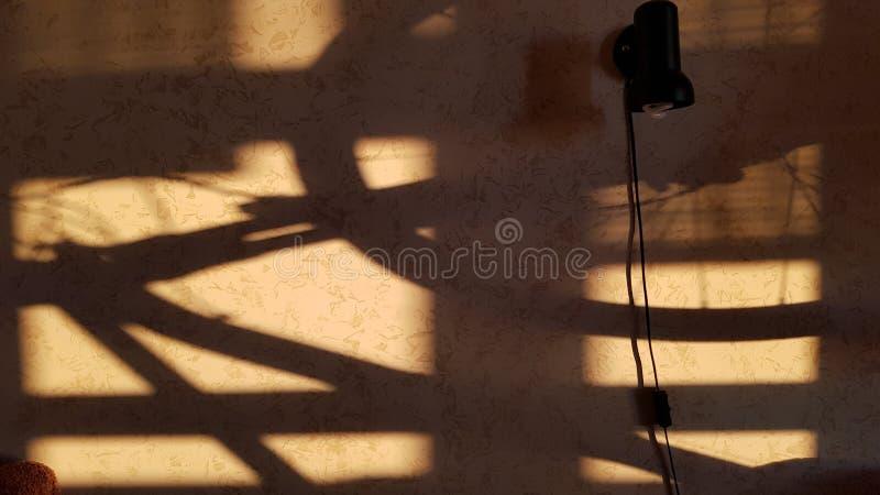 Skuggor på stuckaturväggen som skapas av solnedgångljus arkivfoto