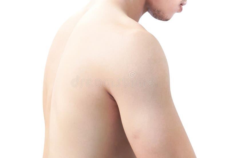 Skuldra för Closeupsidosikt och baksida av kroppmannen på vit bakgrund, hälsovård och medicinskt begrepp royaltyfri bild