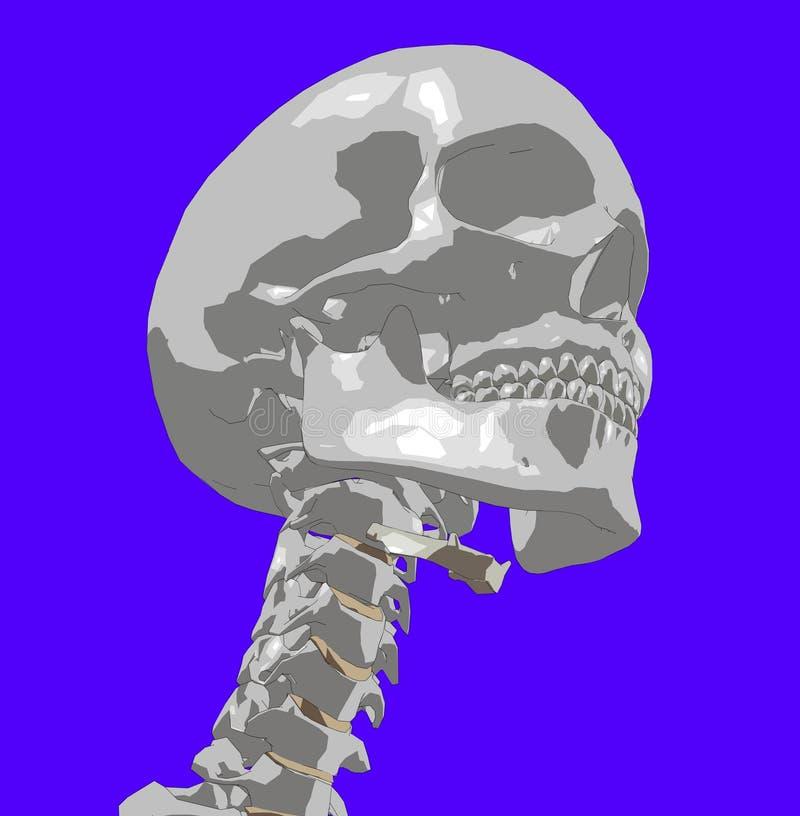 Skull 11 Royalty Free Stock Photo