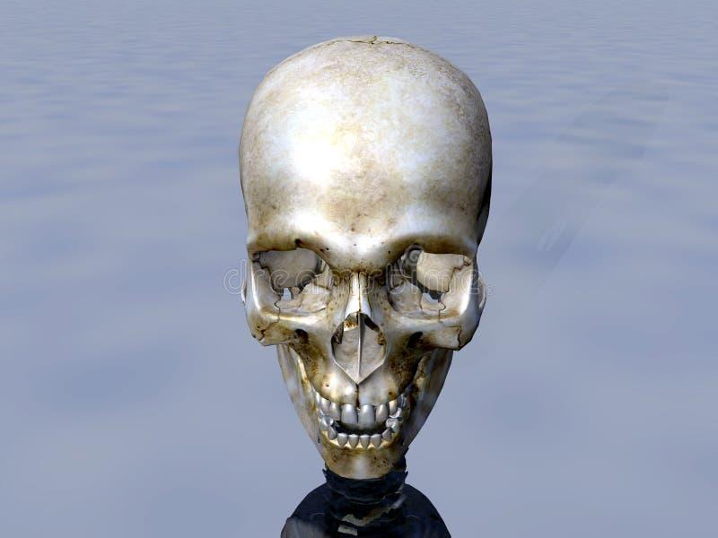 Download Skull 14 Stock Image - Image: 598621