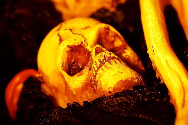 Download Skull Stock Image - Image: 197021