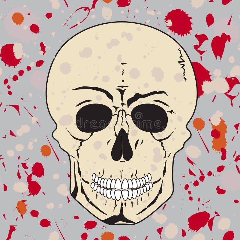 Download Skull Stock Photo - Image: 21603590