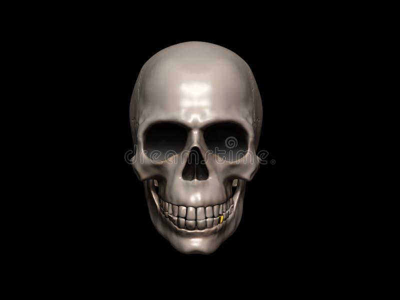 Download Skull Stock Image - Image: 24846811