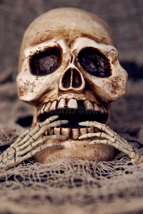 Free Skull Stock Photo - 2794680