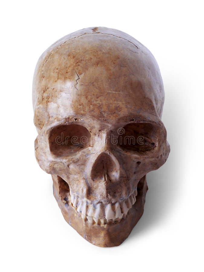 Skull 3 (path included) stock images