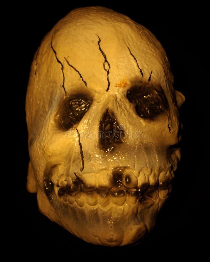 Free Skull Stock Photo - 3271040