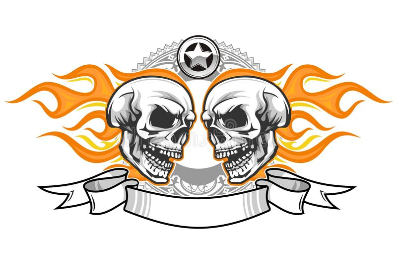 Skull 65 vector illustration