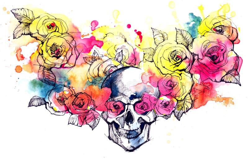 skull ilustração do vetor
