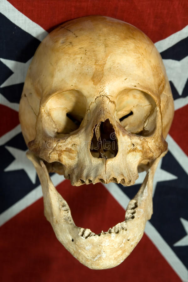Skull. Real skull smiling on Confederate, Rebel, or Dixie Flag stock photo