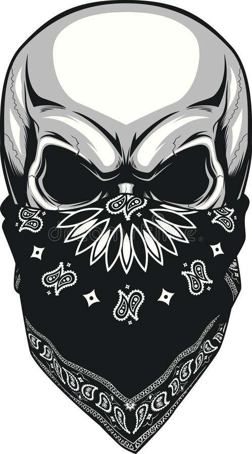 Download Skull bandana stock vector. Illustration of design, drawing - 57169645