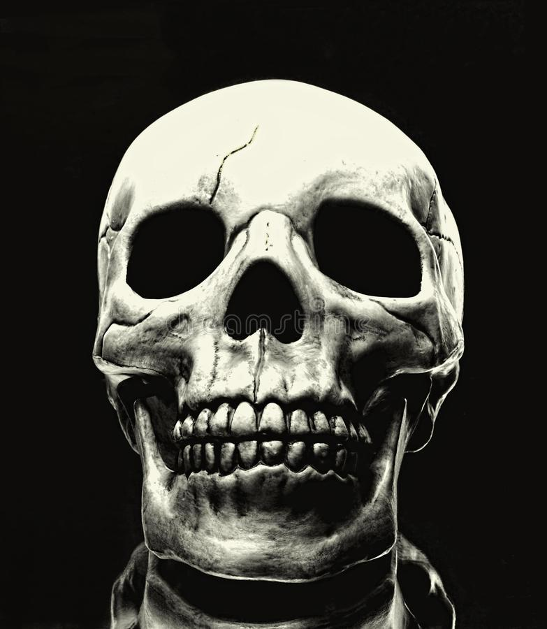 Download Skull stock photo. Image of background, creepy, halloween - 34534198