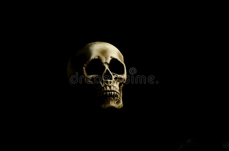 Skull on black background. Skull against black background under single light source stock images