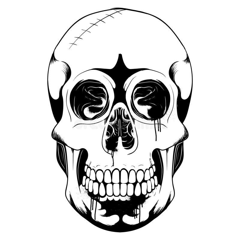 Skull bone head black amd white illustration. Easy to change color stock illustration