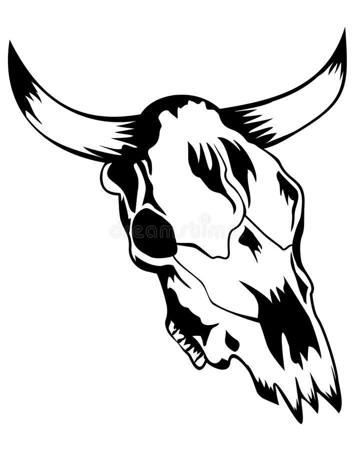 Skull Bull Stock Photos
