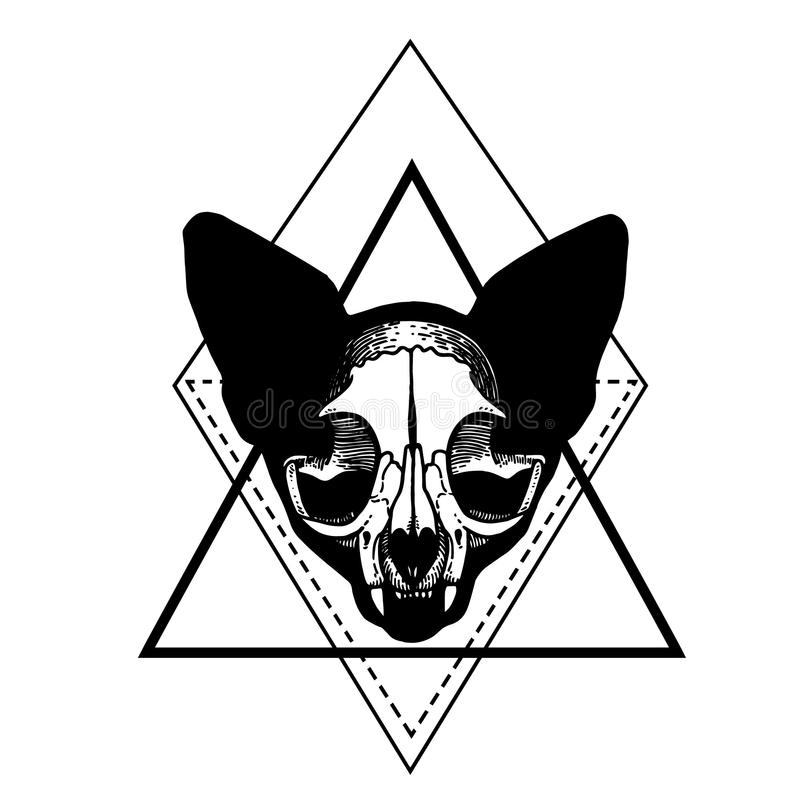 Skull of a cat. Cat silhouette vector illustration