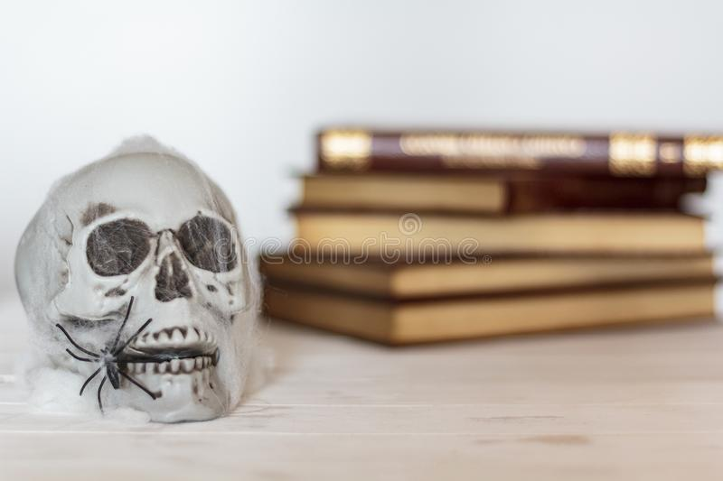 Skull with cobweb and spiders and books on the background. Halloween theme royalty free stock photo