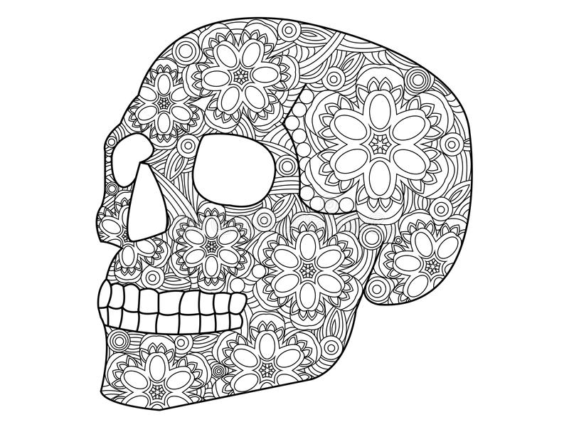 Skull coloring vector for adults. Skull coloring book for adults vector illustration. Anti-stress coloring for adult. Zentangle style. Black and white lines royalty free illustration
