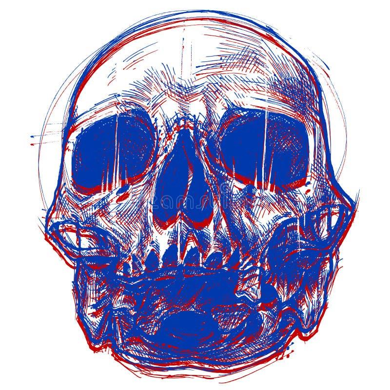 Skull 3D royalty free stock photo
