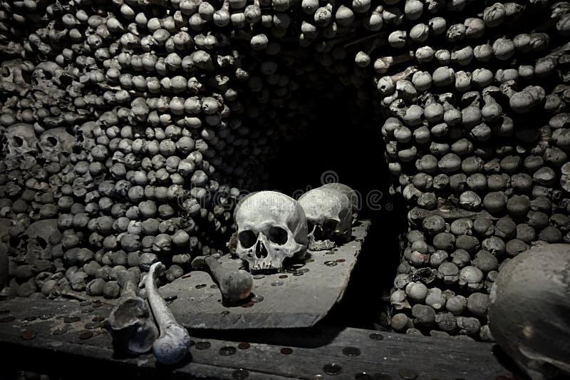 Skull stock photography