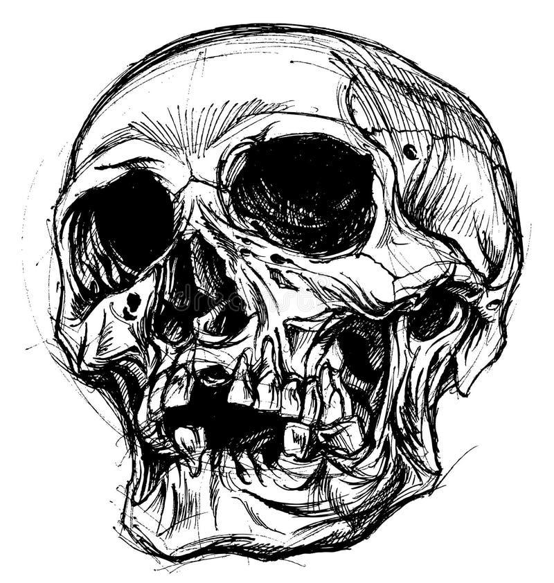 Skull Drawing line work vector vector illustration
