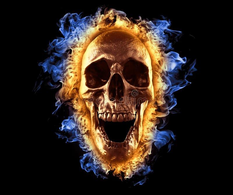 Fire Skull Blue Stock Illustrations 520 Fire Skull Blue Stock Illustrations Vectors Clipart Dreamstime