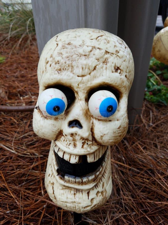 Skull funny. Halloween silly goofy humor yard decorations stock photography