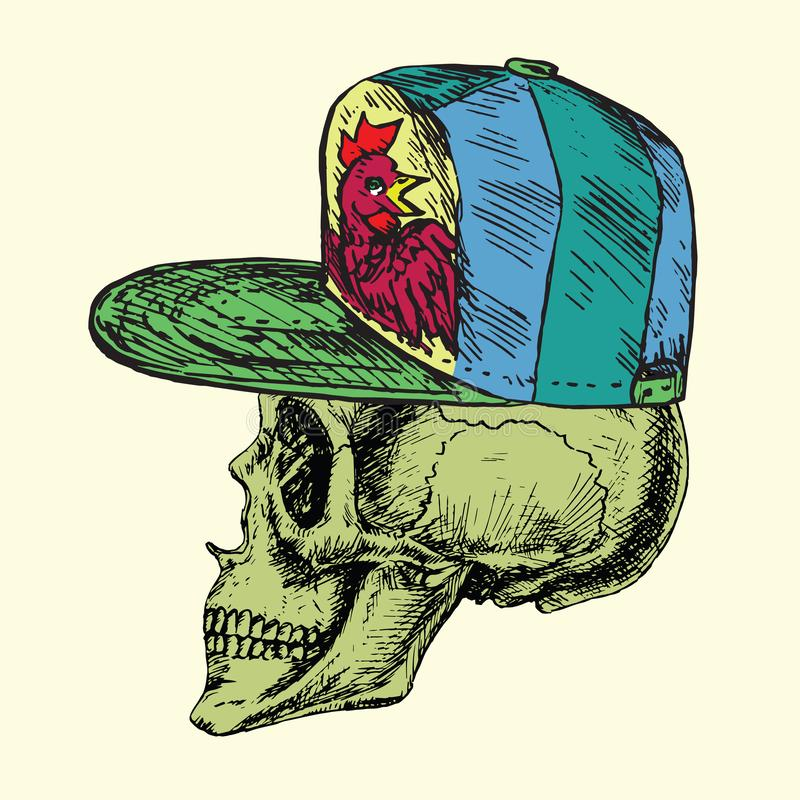 Skull in green cap with rooster, hand drawn doodle, sketch in woodcut style, illustration vector illustration