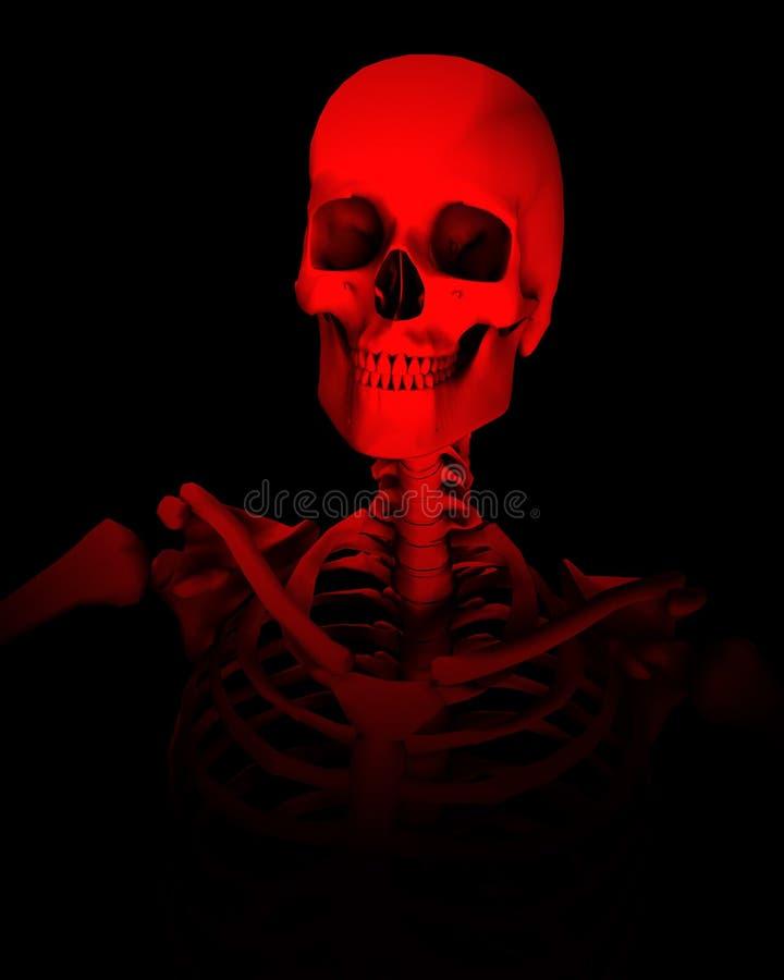 Skull For Halloween 5 Stock Images