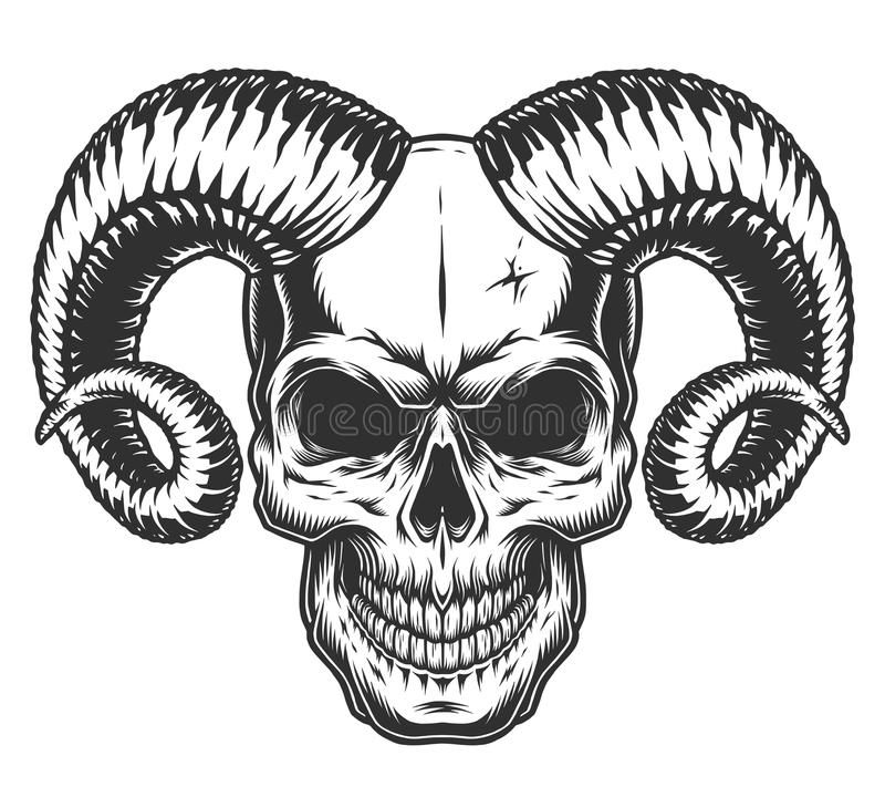 Skull with horns. Isolated on white. Detailed vector illustration royalty free illustration