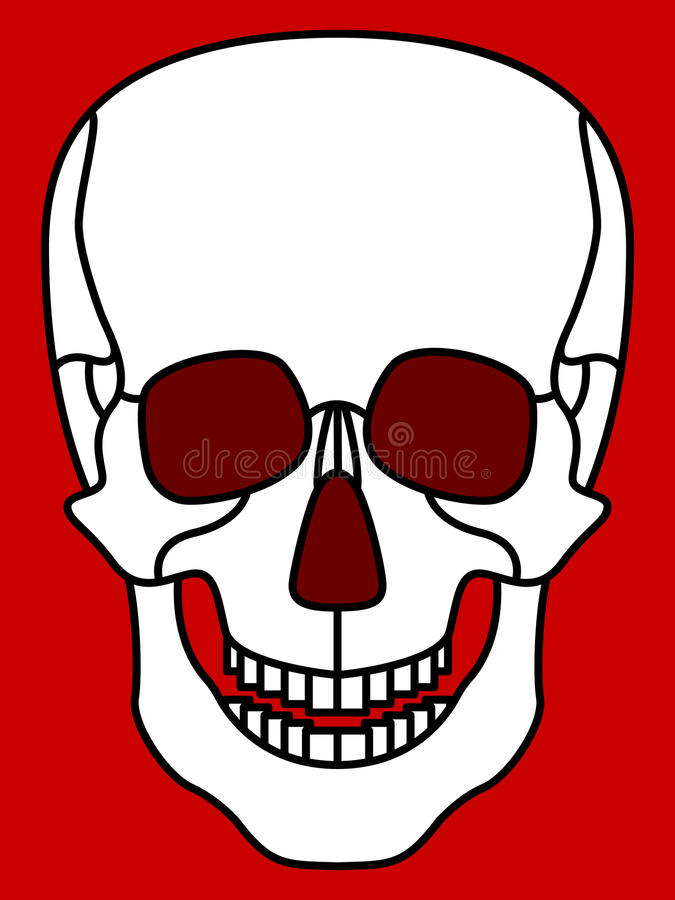 Skull. Illustration of the cartoon skull icon stock illustration