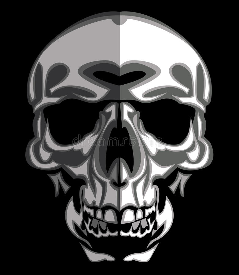 Skull Image On Black Vector Royalty Free Stock Photo
