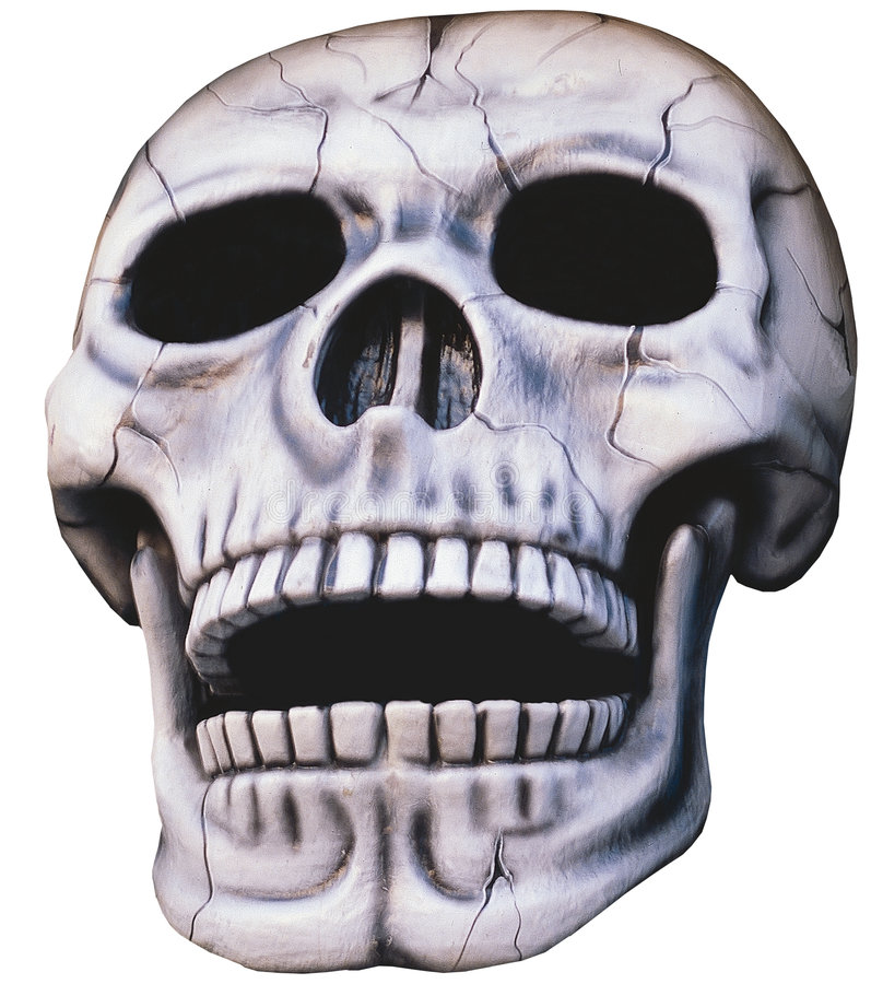 Download Skull - Isolated Royalty Free Stock Image - Image: 2322966