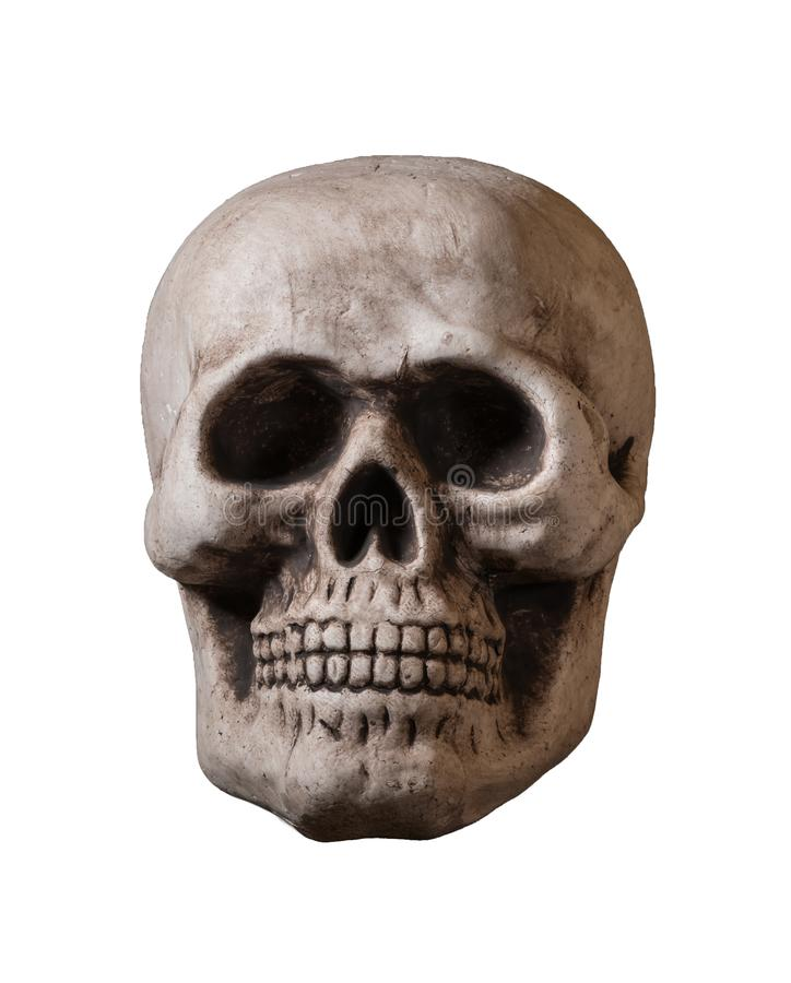 Isolated skull against white background royalty free stock images