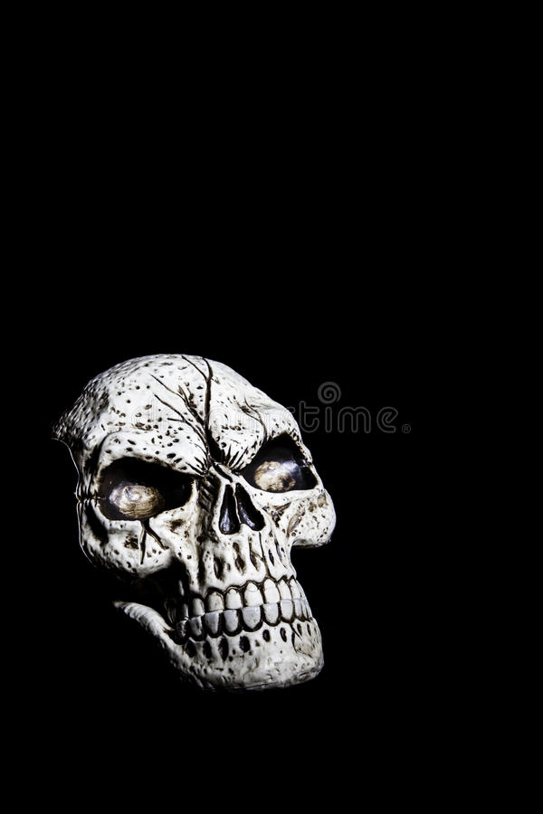 Skull Isolated on Black royalty free stock images