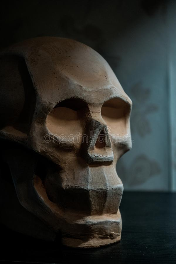 Skull layout for drawing and modeling with clay. For artists stock photo